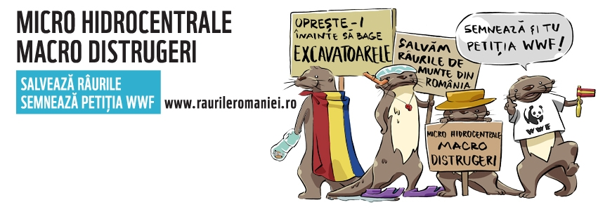 raurileromaniei-coverphoto1