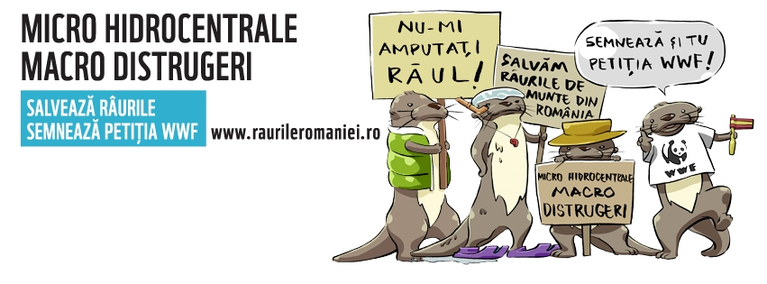 raurileromaniei-coverphoto2