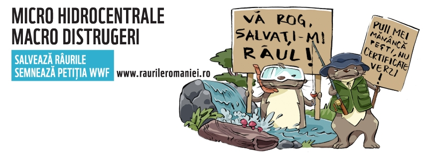 raurileromaniei-coverphoto3