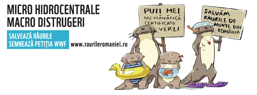 raurileromaniei-coverphoto4